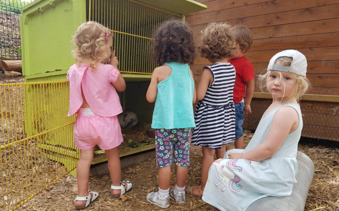 Protégé: Stage bilingue vacances d'été du 22 au 26 juillet 2019