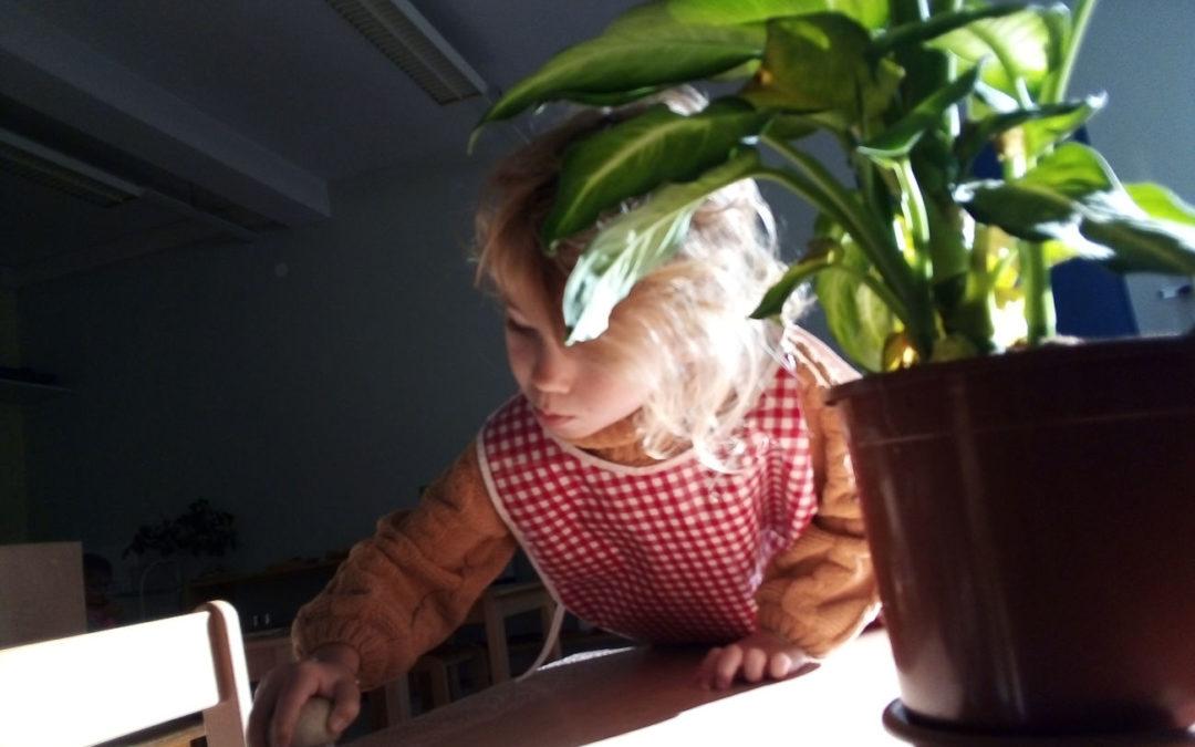 Le nettoyage s'apprend dès le plus jeune âge