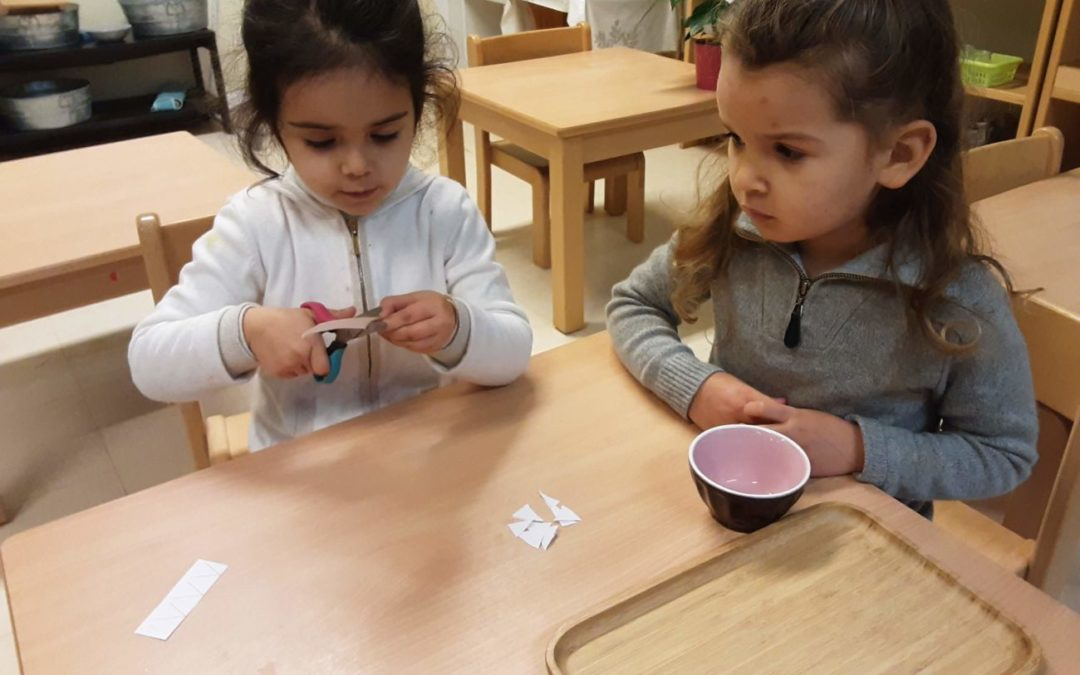The principle of observation in Montessori