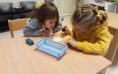 Le principe de l'observation chez Montessori