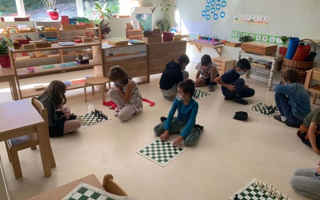 Children learn success by playing chess